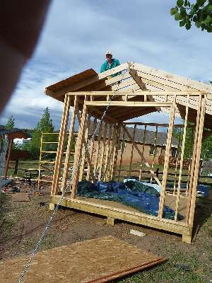 Photo of the roof sheathing going on the trusses of the gable shed.