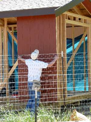 Photo of our member installing exterior panels on his shed.