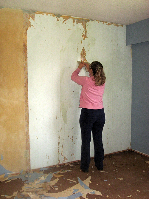 Photo of a daughter of Dave removing wallpaper.