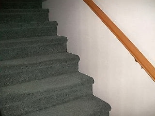 Photo of carpetted stairs from a member.