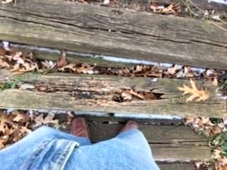 A close-up photo of rotted boards in a backyard set of steps.